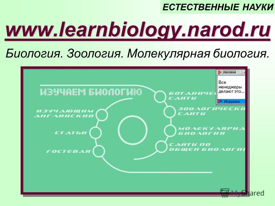 www.learnbiology.narod.ru Биология. Зоология. Молекулярная биология. ЕСТЕСТВЕННЫЕ НАУКИ