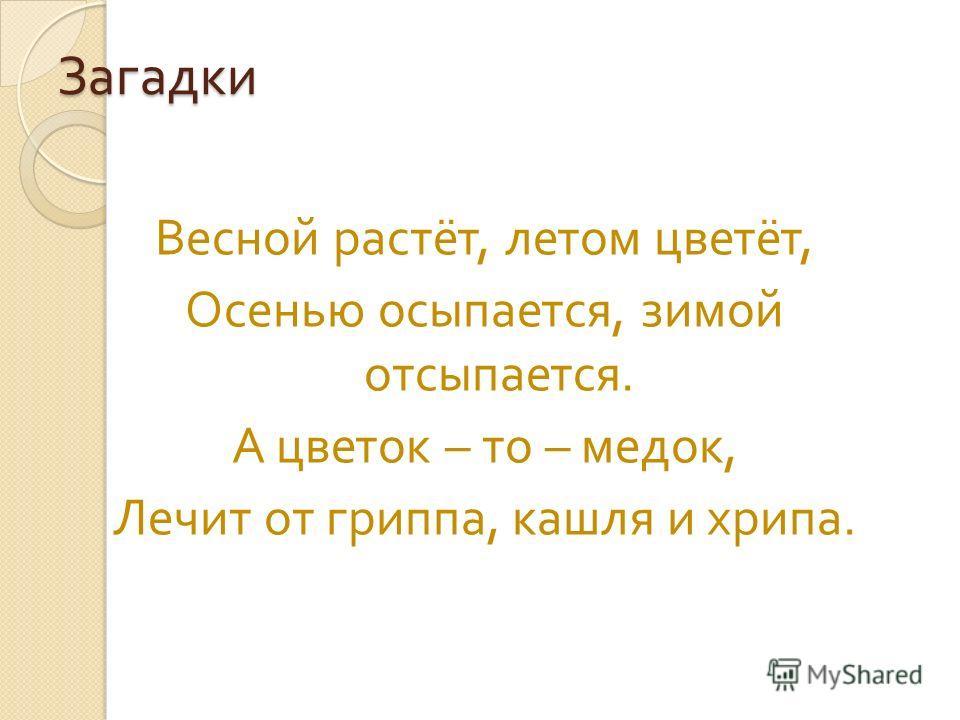 Загадки Весной растёт, летом цветёт, Осенью осыпается, зимой отсыпается. А цветок – то – медок, Лечит от гриппа, кашля и хрипа.