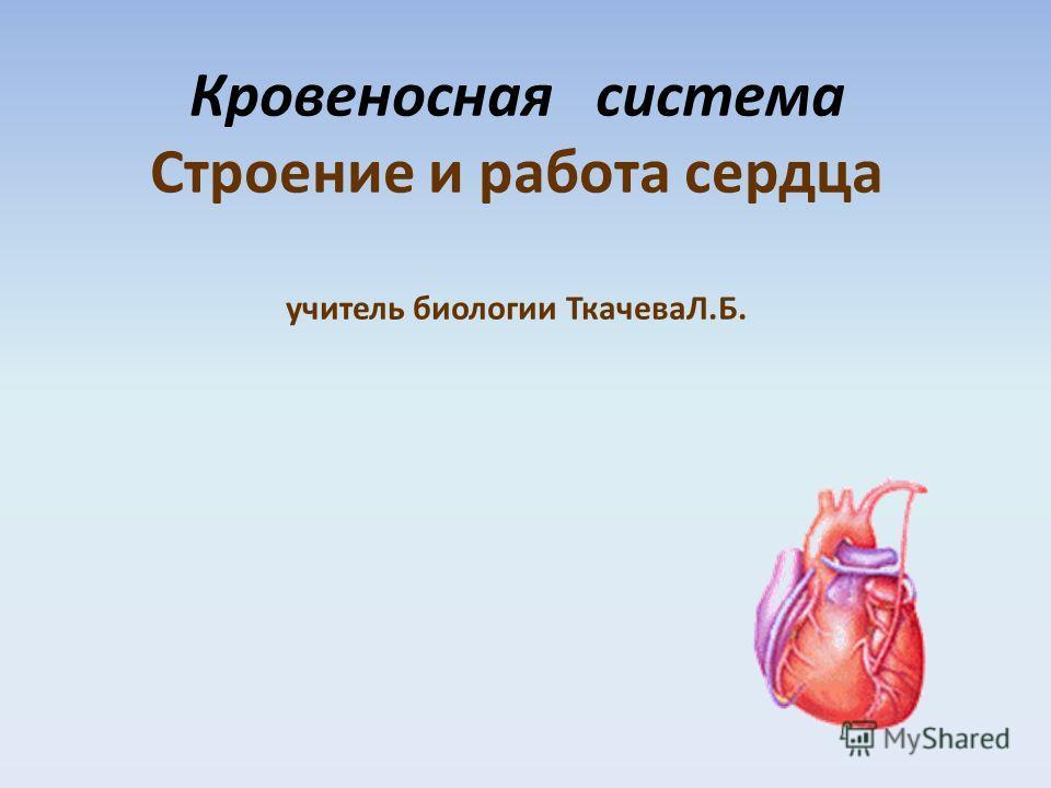Кровеносная система Строение и работа сердца учитель биологии ТкачеваЛ.Б.