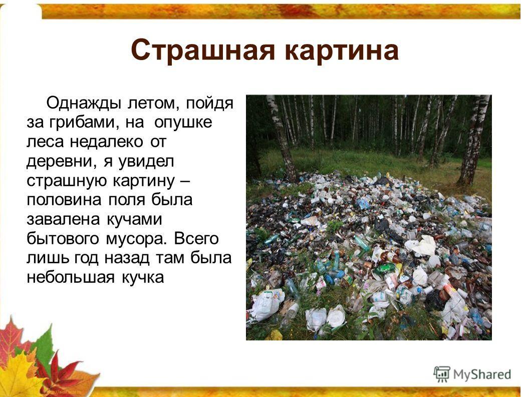 Страшная картина Однажды летом, пойдя за грибами, на опушке леса недалеко от деревни, я увидел страшную картину – половина поля была завалена кучами бытового мусора. Всего лишь год назад там была небольшая кучка