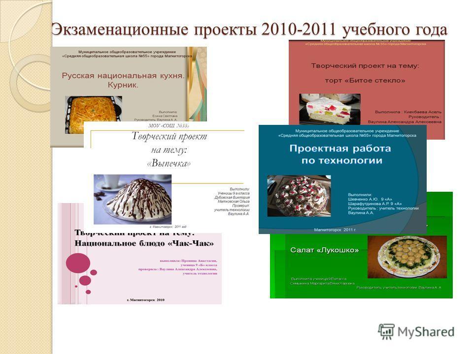Экзаменационные проекты 2010-2011 учебного года