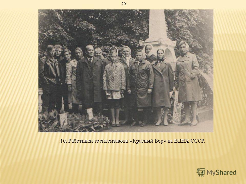 10. Работники госплемзавода «Красный Бор» на ВДНХ СССР. 20