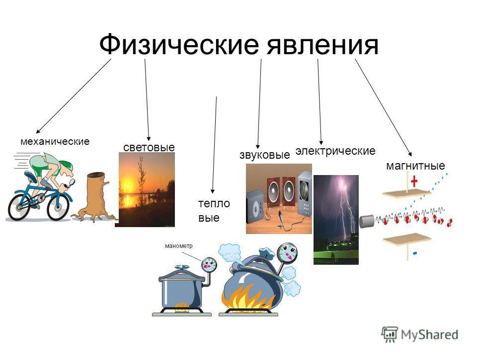 Физические явления механические световые тепло вые звуковые электрические магнитные