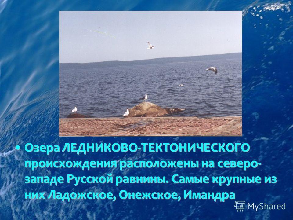 Озера ЛЕДНИКОВО-ТЕКТОНИЧЕСКОГО происхождения расположены на северо- западе Русской равнины. Самые крупные из них Ладожское, Онежское, ИмандраОзера ЛЕДНИКОВО-ТЕКТОНИЧЕСКОГО происхождения расположены на северо- западе Русской равнины. Самые крупные из