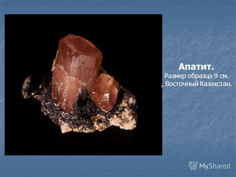 Апатит. Размер образца 9 см., Восточный Казахстан.