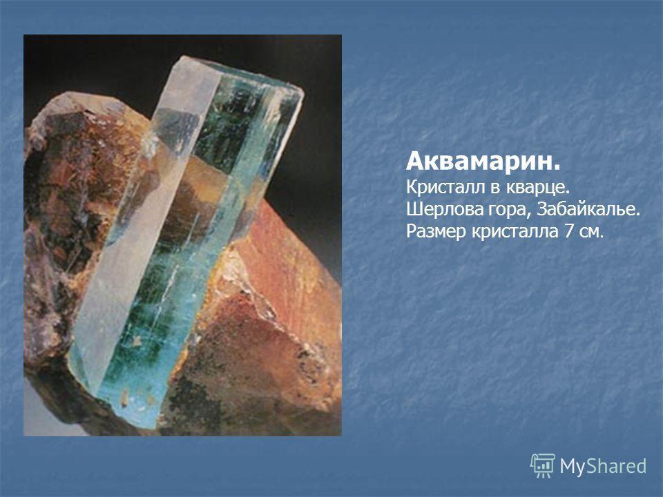 Аквамарин. Кристалл в кварце. Шерлова гора, Забайкалье. Размер кристалла 7 см.