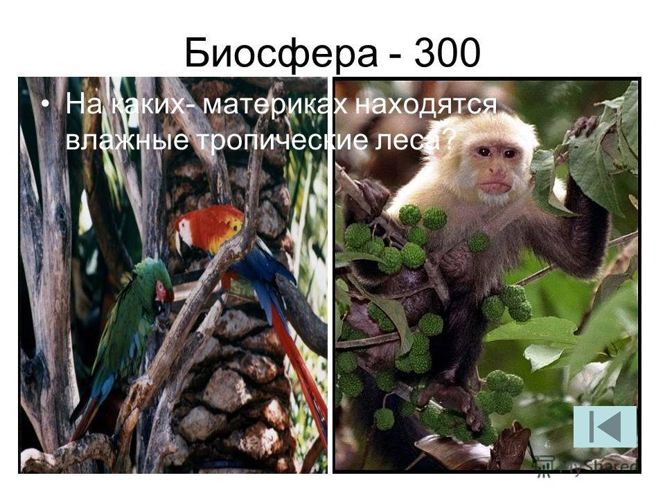 Биосфера - 300 На каких- материках находятся влажные тропические леса?