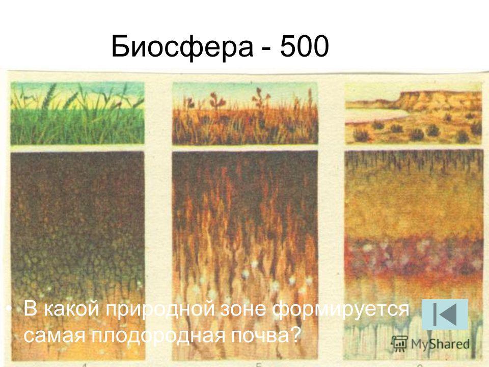 Биосфера - 500 В какой природной зоне формируется самая плодородная почва?