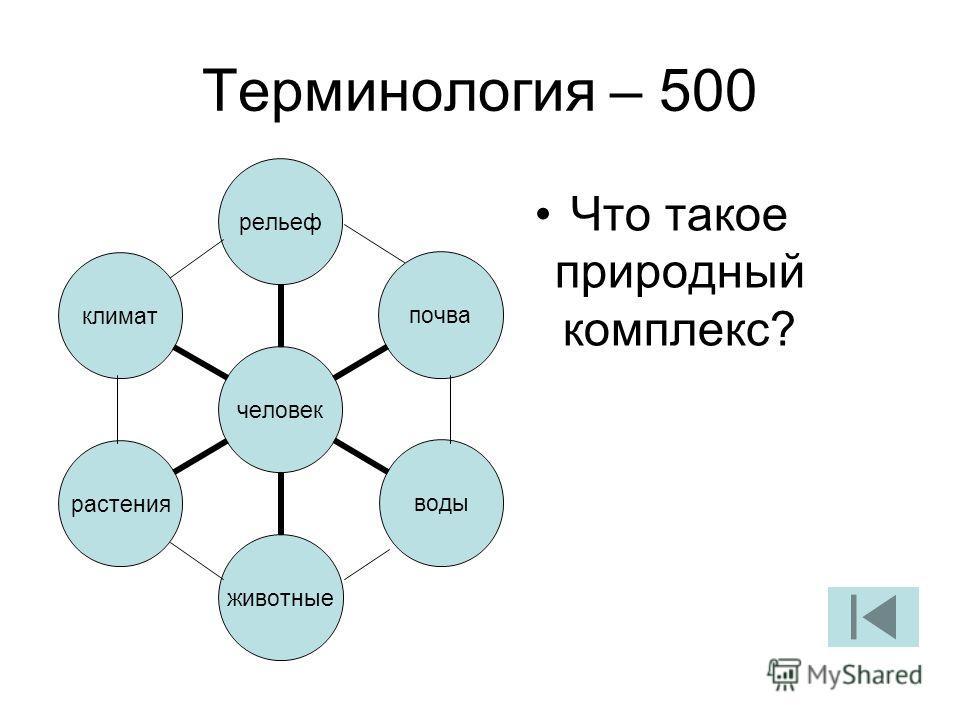 Терминология – 500 Что такое природный комплекс? человек рельефпочваводыживотныерастенияклимат