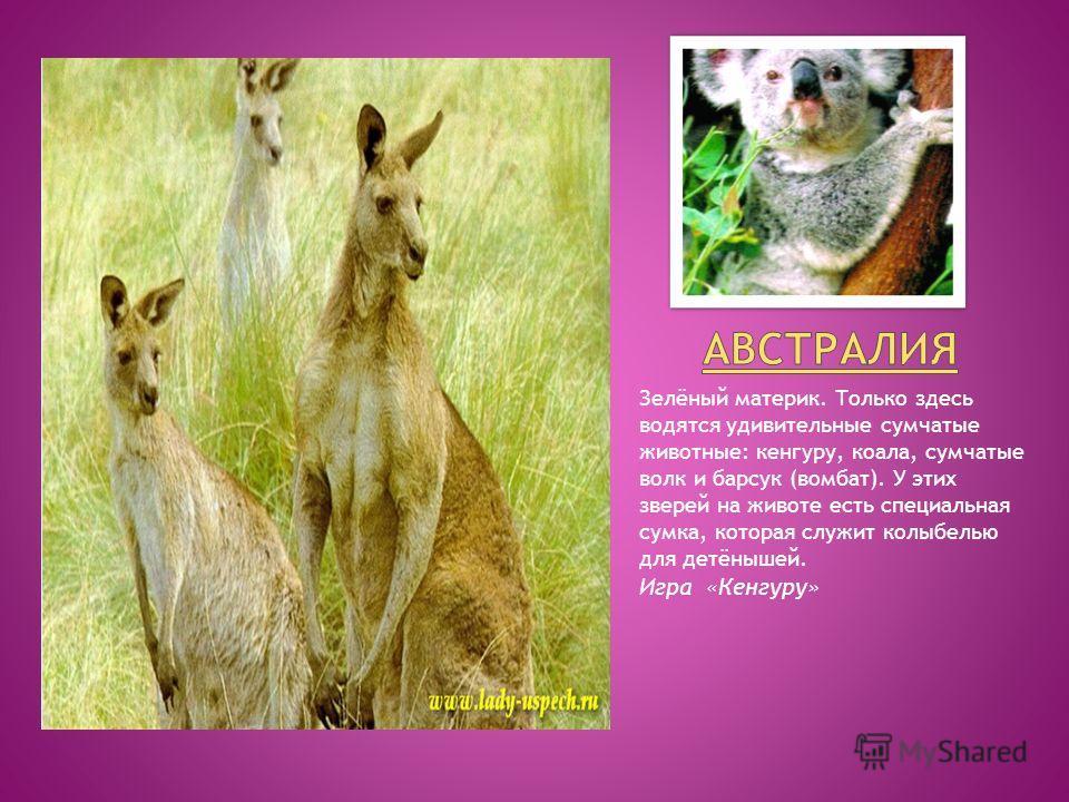 Зелёный материк. Только здесь водятся удивительные сумчатые животные: кенгуру, коала, сумчатые волк и барсук (вомбат). У этих зверей на животе есть специальная сумка, которая служит колыбелью для детёнышей. Игра «Кенгуру»