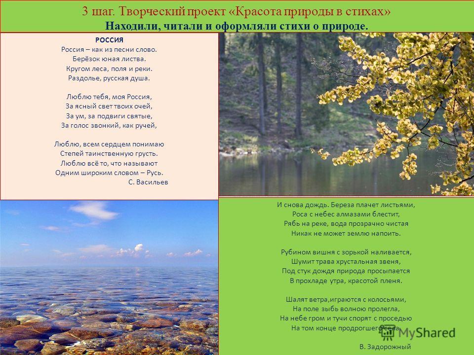 3 шаг. Творческий проект «Красота природы в стихах» Находили, читали и оформляли стихи о природе. И снова дождь. Береза плачет листьями, Роса с небес алмазами блестит, Рябь на реке, вода прозрачно чистая Никак не может землю напоить. Рубином вишня с