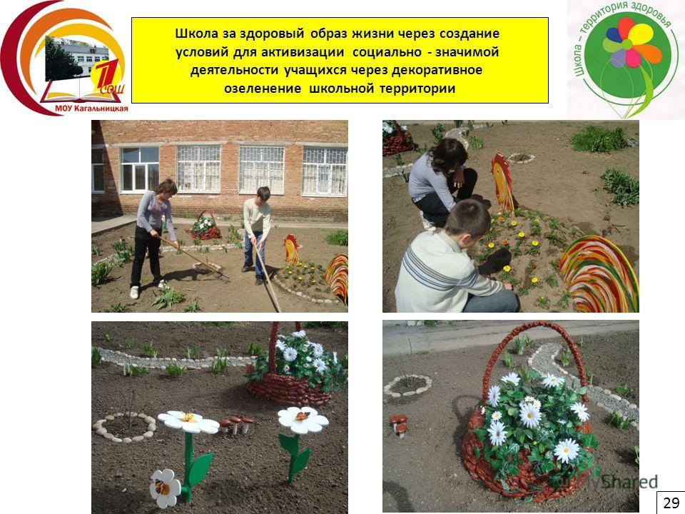 Школа за здоровый образ жизни через создание условий для активизации социально - значимой деятельности учащихся через декоративное озеленение школьной территории 29