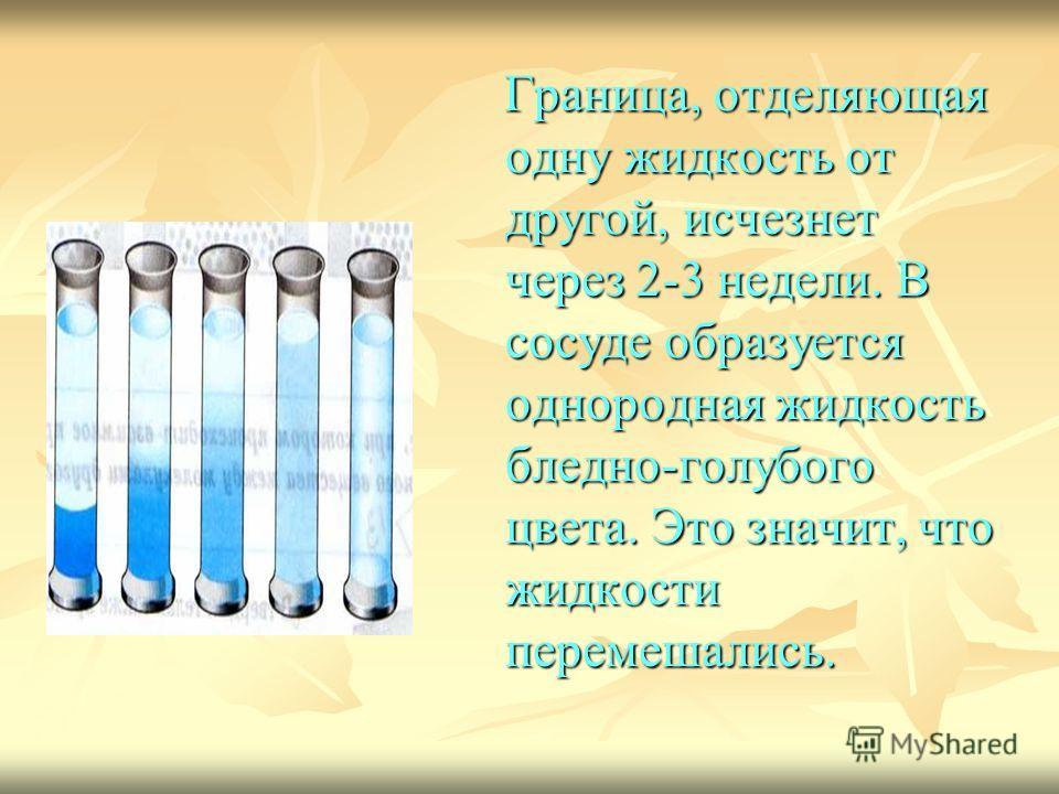 Граница, отделяющая одну жидкость от другой, исчезнет через 2-3 недели. В сосуде образуется однородная жидкость бледно-голубого цвета. Это значит, что жидкости перемешались.