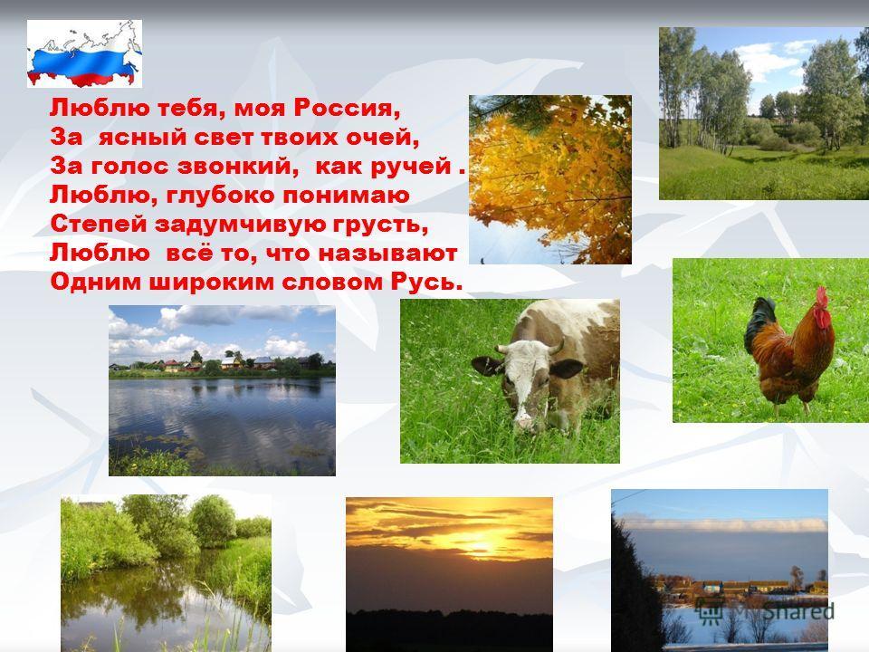 Люблю тебя, моя Россия, За ясный свет твоих очей, За голос звонкий, как ручей. Люблю, глубоко понимаю Степей задумчивую грусть, Люблю всё то, что называют Одним широким словом Русь.