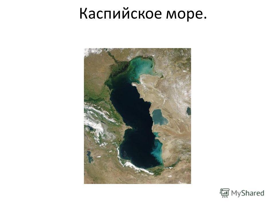 Каспийское море.