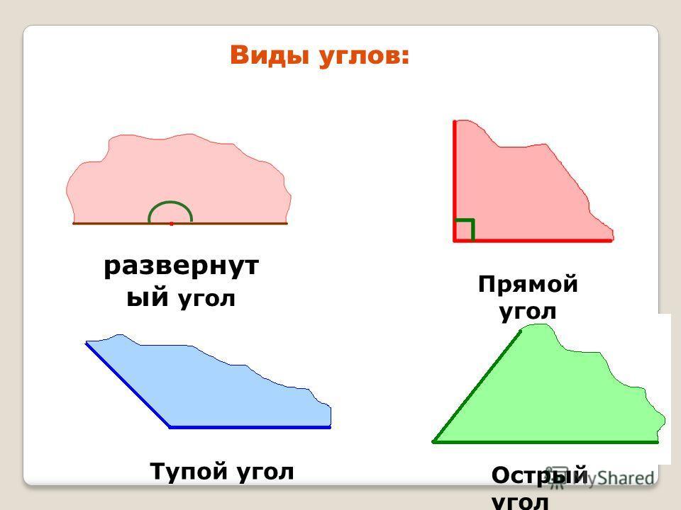 Виды углов: Острый угол развернут ый угол Прямой угол Тупой угол