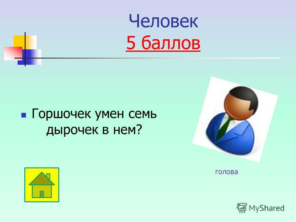Человек 5 баллов 5 баллов Горшочек умен семь дырочек в нем? голова