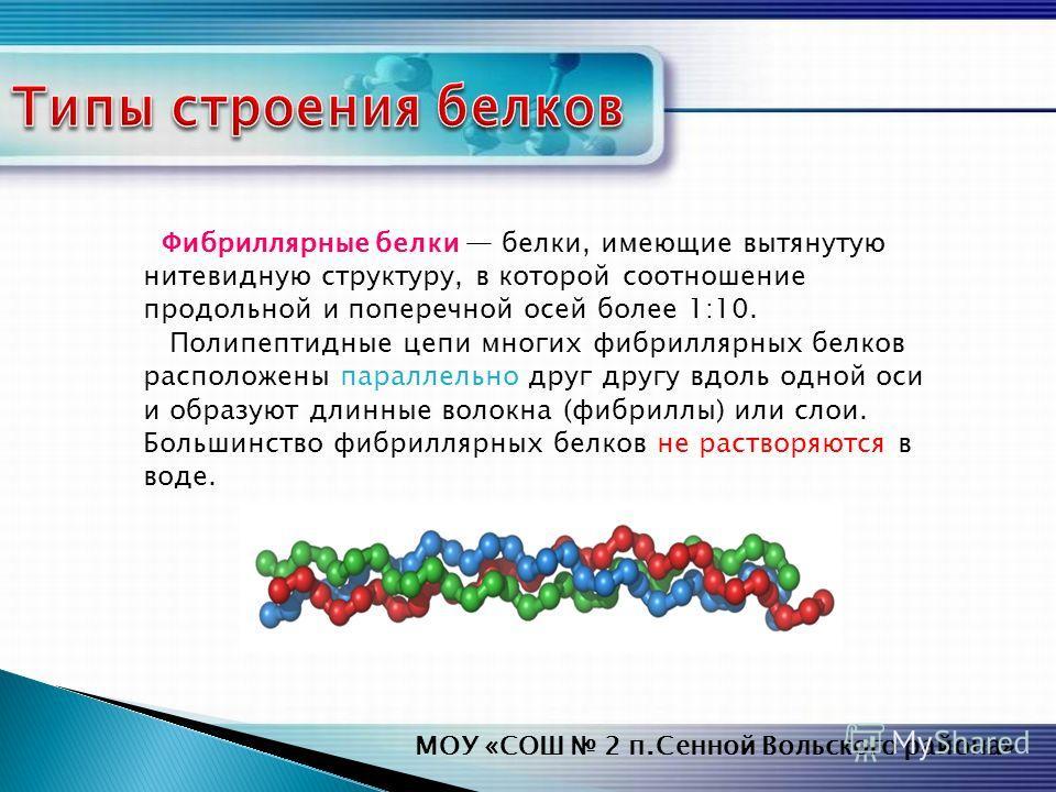 Фибриллярные белки белки, имеющие вытянутую нитевидную структуру, в которой соотношение продольной и поперечной осей более 1:10. Полипептидные цепи многих фибриллярных белков расположены параллельно друг другу вдоль одной оси и образуют длинные волок