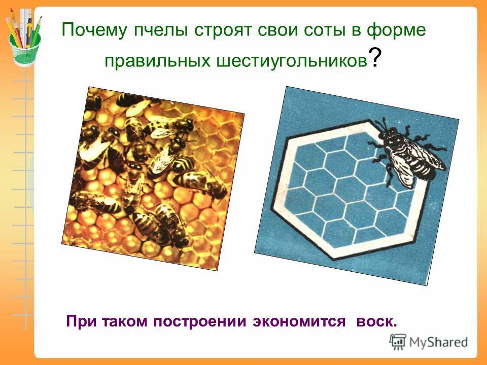 Почему пчелы строят свои соты в форме правильных шестиугольников ? При таком построении экономится воск.