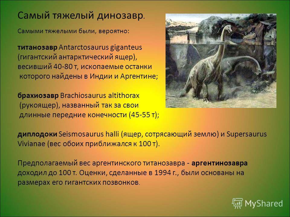 Самый тяжелый динозавр. Самыми тяжелыми были, вероятно: титанозавр Antarctosaurus giganteus (гигантский антарктический ящер), весивший 40-80 т, ископаемые останки которого найдены в Индии и Аргентине; брахиозавр Brachiosaurus altithorax (рукоящер), н