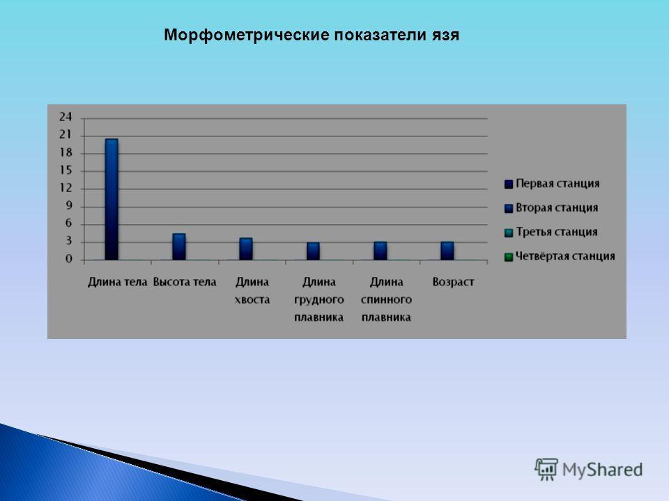 Морфометрические показатели язя