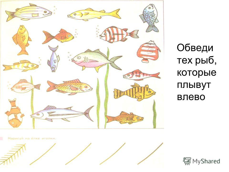 Обведи тех рыб, которые плывут влево