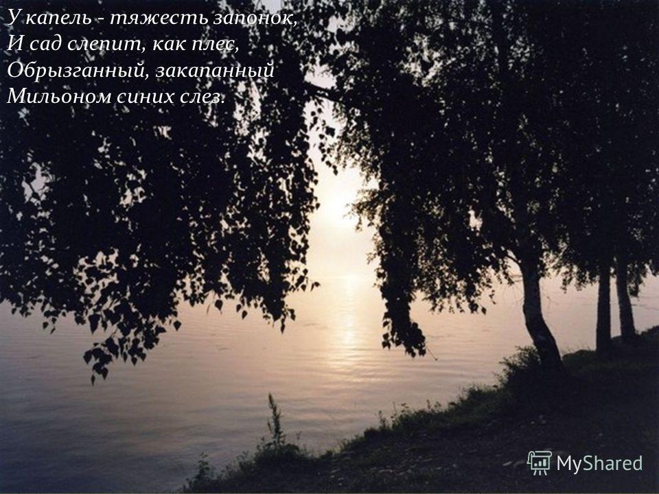 У капель - тяжесть запонок, И сад слепит, как плес, Обрызганный, закапанный Мильоном синих слез.