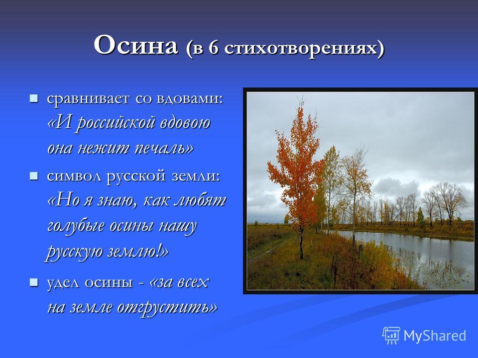 Осина (в 6 стихотворениях) сравнивает со вдовами: «И российской вдовою она нежит печаль» сравнивает со вдовами: «И российской вдовою она нежит печаль» символ русской земли: «Но я знаю, как любят голубые осины нашу русскую землю!» символ русской земли