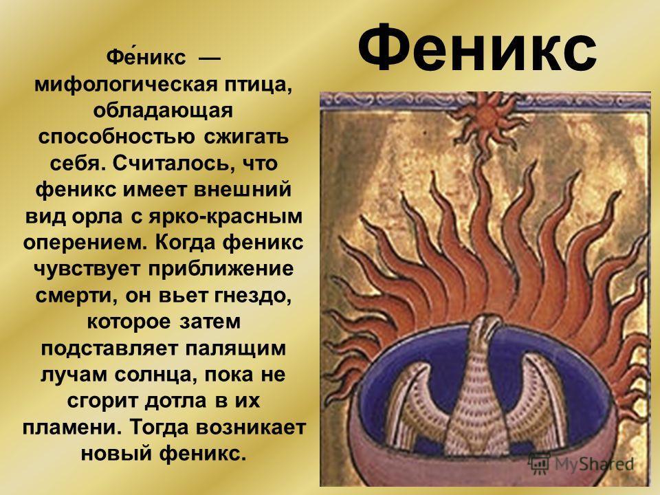 Феникс Фе́никс мифологическая птица, обладающая способностью сжигать себя. Считалось, что феникс имеет внешний вид орла с ярко-красным оперением. Когда феникс чувствует приближение смерти, он вьет гнездо, которое затем подставляет палящим лучам солнц