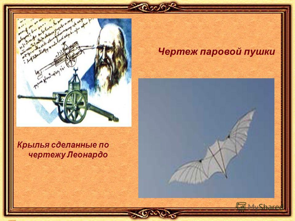 Крылья сделанные по чертежу Леонардо Чертеж паровой пушки