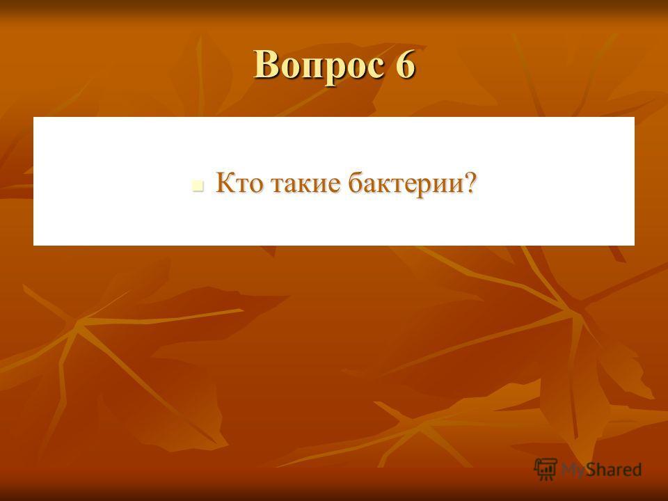 Вопрос 5 Изобразите части растений. Изобразите части растений.