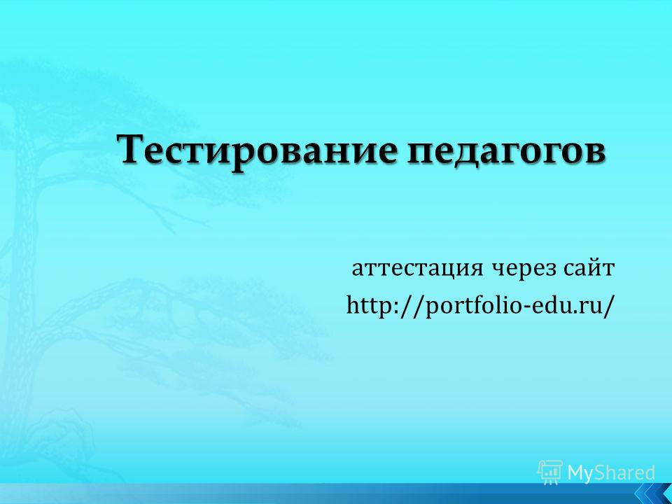 аттестация через сайт http://portfolio-edu.ru/