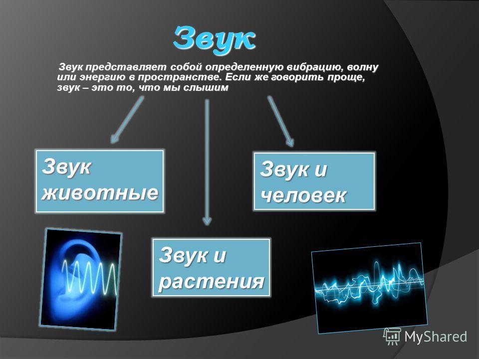 Звук Звук представляет собой определенную вибрацию, волну или энергию в пространстве. Если же говорить проще, звук – это то, что мы слышим Звук животные Звук и человек Звук и растения