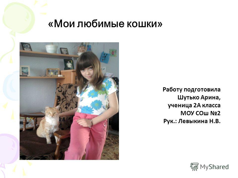 «Мои любимые кошки» Работу подготовила Шутько Арина, ученица 2А класса МОУ СОш 2 Рук.: Левыкина Н.В.