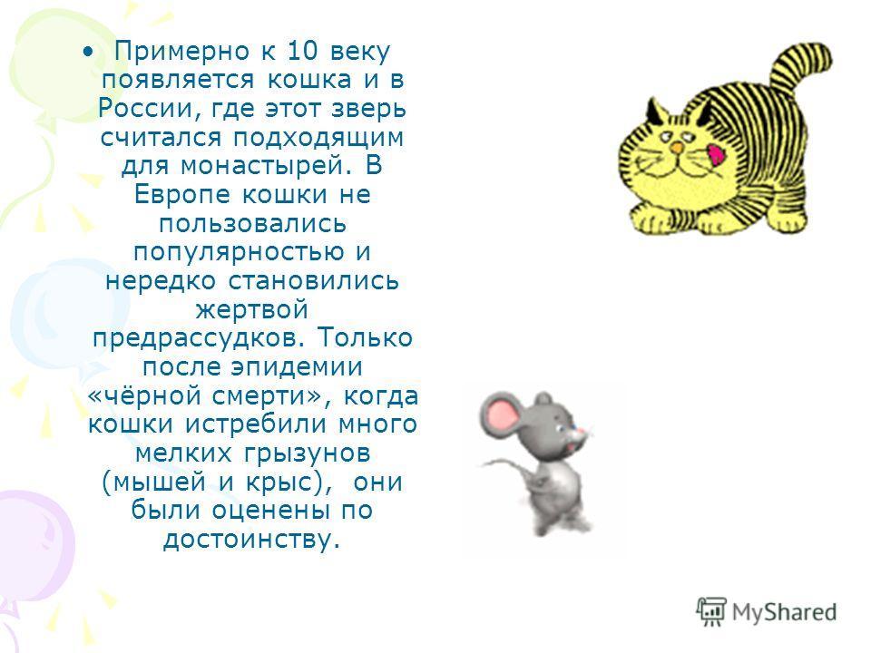 Примерно к 10 веку появляется кошка и в России, где этот зверь считался подходящим для монастырей. В Европе кошки не пользовались популярностью и нередко становились жертвой предрассудков. Только после эпидемии «чёрной смерти», когда кошки истребили