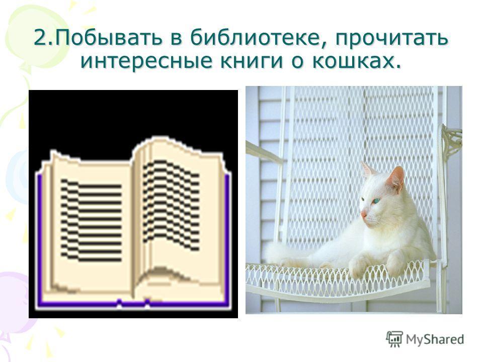 2.Побывать в библиотеке, прочитать интересные книги о кошках.