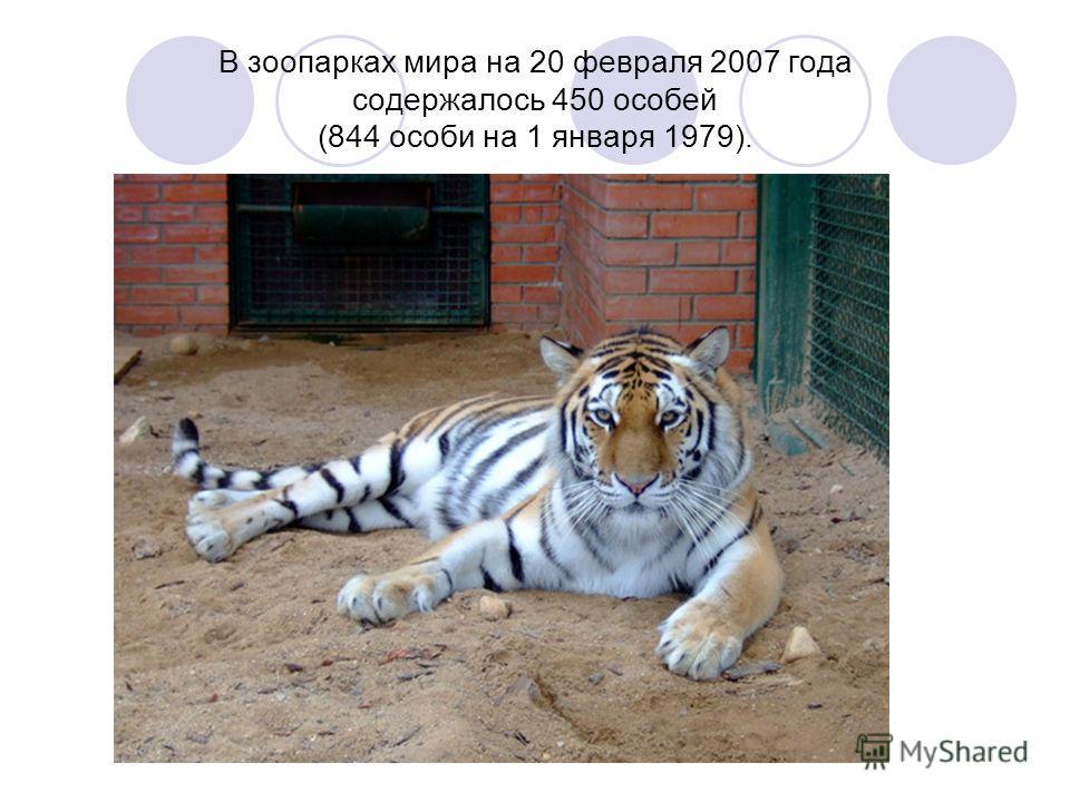 В зоопарках мира на 20 февраля 2007 года содержалось 450 особей (844 особи на 1 января 1979).