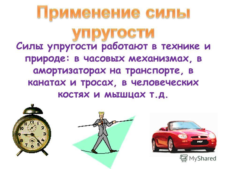 Силы упругости работают в технике и природе: в часовых механизмах, в амортизаторах на транспорте, в канатах и тросах, в человеческих костях и мышцах т.д.