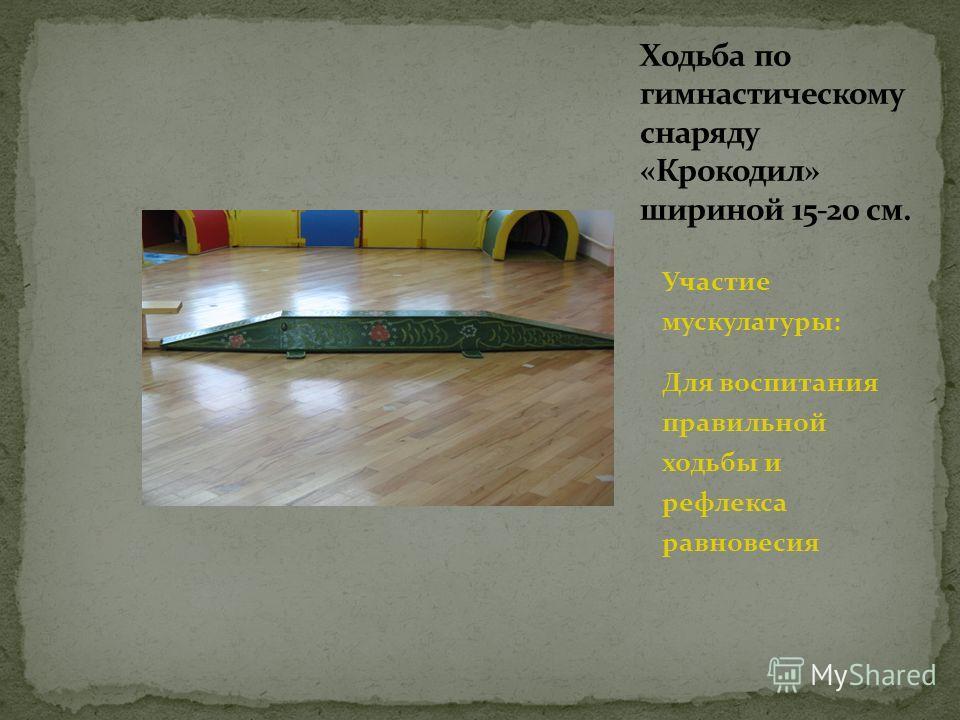 Участие мускулатуры: Для воспитания правильной ходьбы и рефлекса равновесия