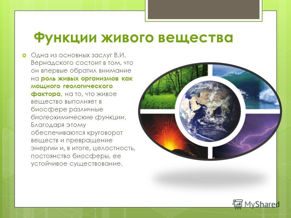 Функции живого вещества Одна из основных заслуг В.И. Вернадского состоит в том, что он впервые обратил внимание на роль живых организмов как мощного геологического фактора, на то, что живое вещество выполняет в биосфере различные биогеохимические фун