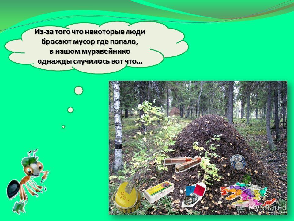 Из-за того что некоторые люди бросают мусор где попало, в нашем муравейнике однажды случилось вот что…