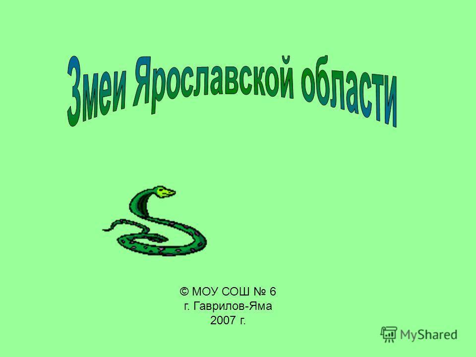 © МОУ СОШ 6 г. Гаврилов-Яма 2007 г.