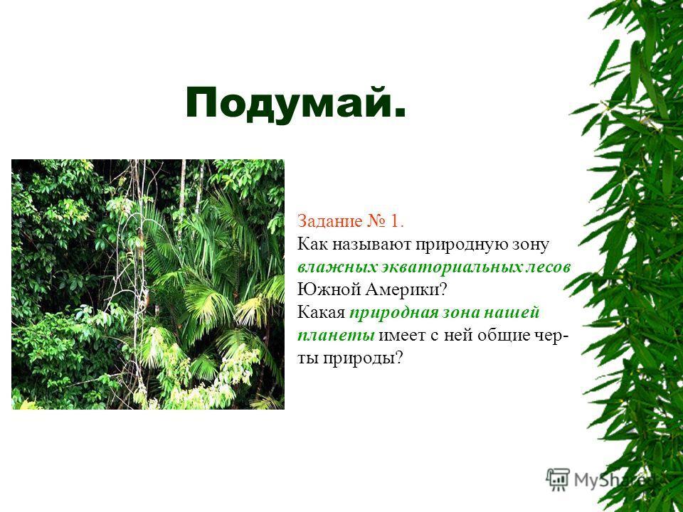 Подумай. Задание 1. Как называют природную зону влажных экваториальных лесов Южной Америки? Какая природная зона нашей планеты имеет с ней общие чер- ты природы?