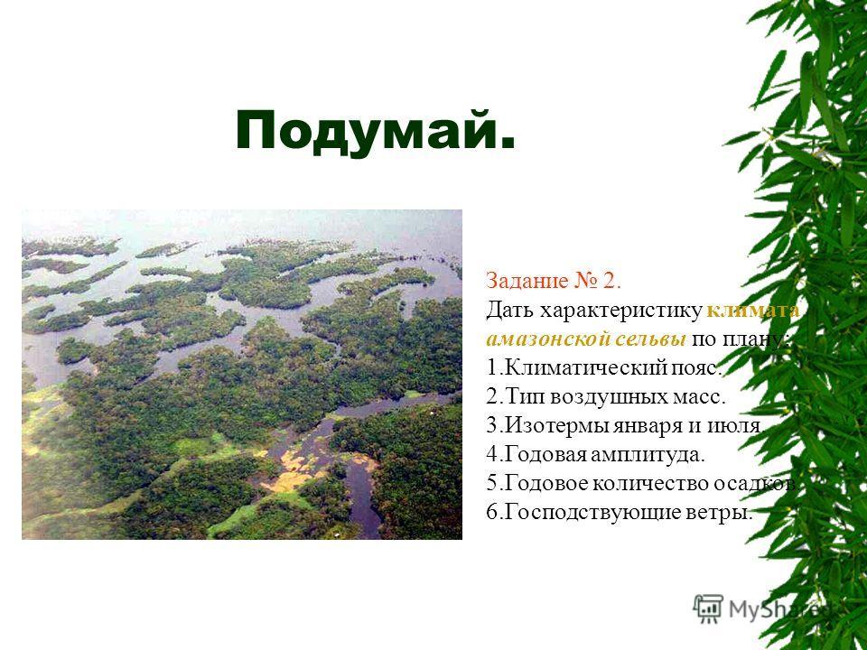 Подумай. Задание 2. Дать характеристику климата амазонской сельвы по плану: 1.Климатический пояс. 2.Тип воздушных масс. 3.Изотермы января и июля. 4.Годовая амплитуда. 5.Годовое количество осадков. 6.Господствующие ветры.