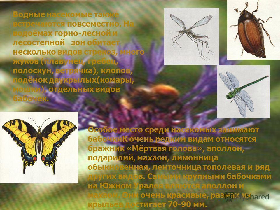 Водные насекомые также встречаются повсеместно. На водоёмах горно-лесной и лесостепной зон обитает несколько видов стрекоз, много жуков (плавунец, гребец, полоскун, ветрячка), клопов, подёнок двукрылых(комары, мошки), отдельных видов бабочек. Особое