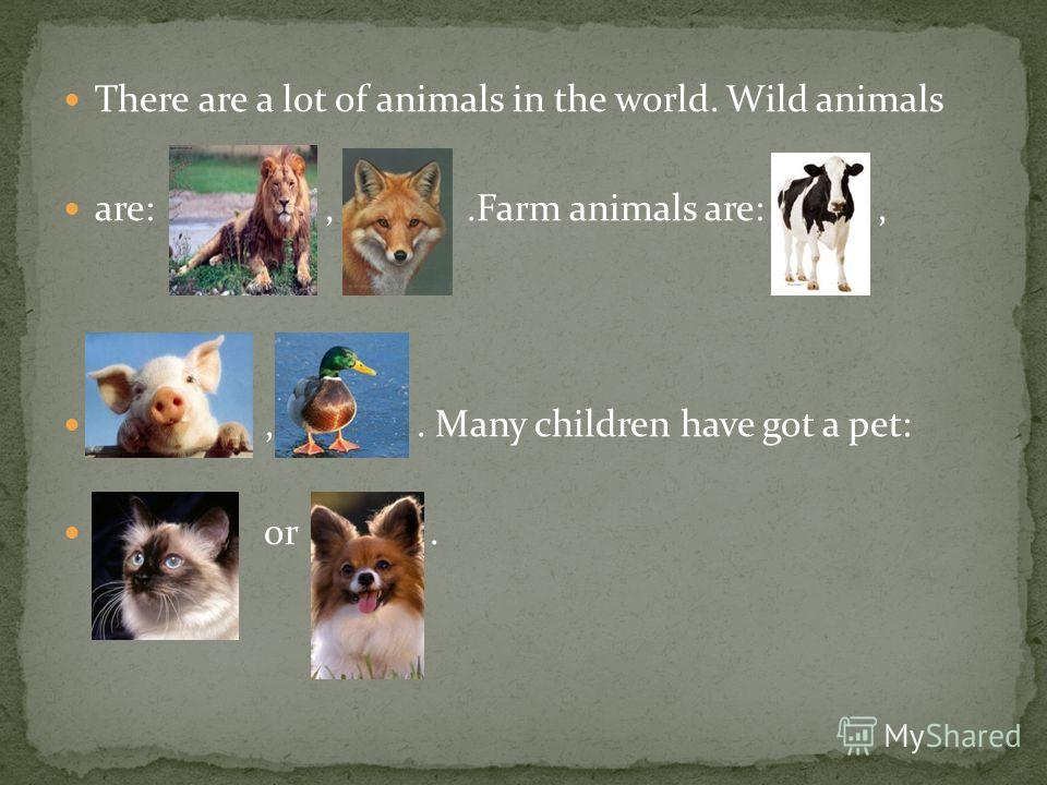 There are a lot of animals in the world. Wild animals are:,.Farm animals are:,,. Many children have got a pet: or.