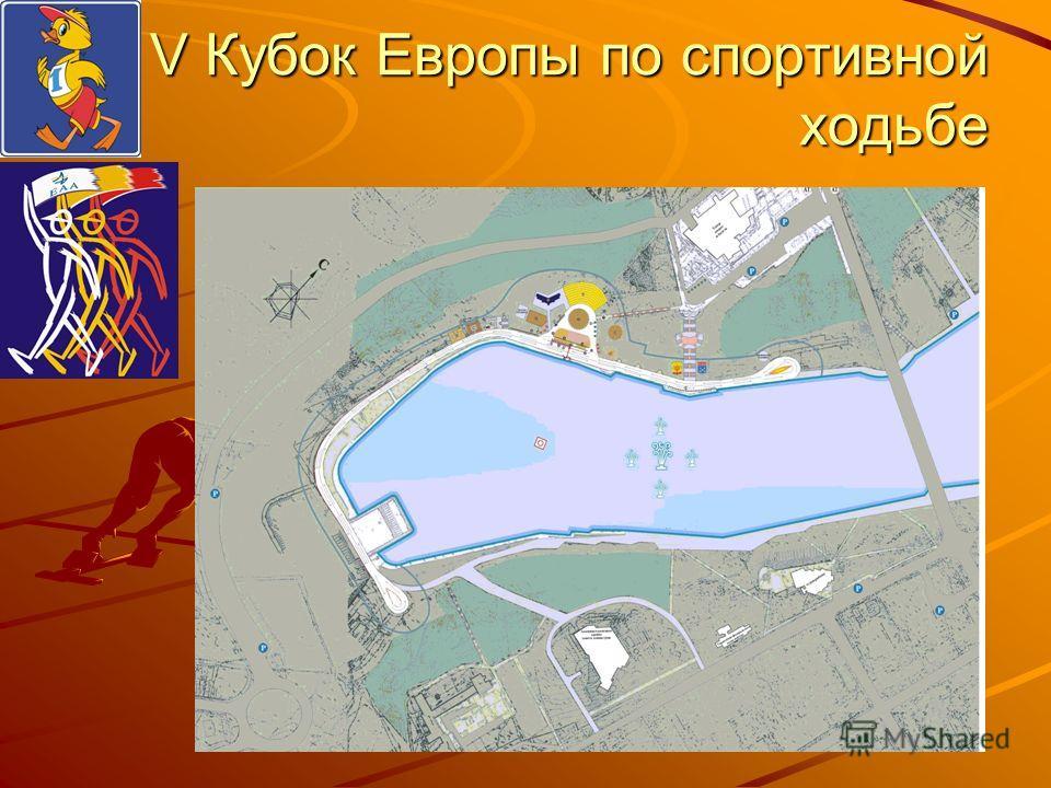 V Кубок Европы по спортивной ходьбе