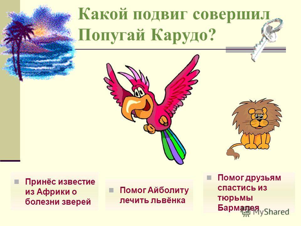 Какое животное было одним из самых любимых у доктора Айболита? Собака АвваПопугай Бумба Сова Кика