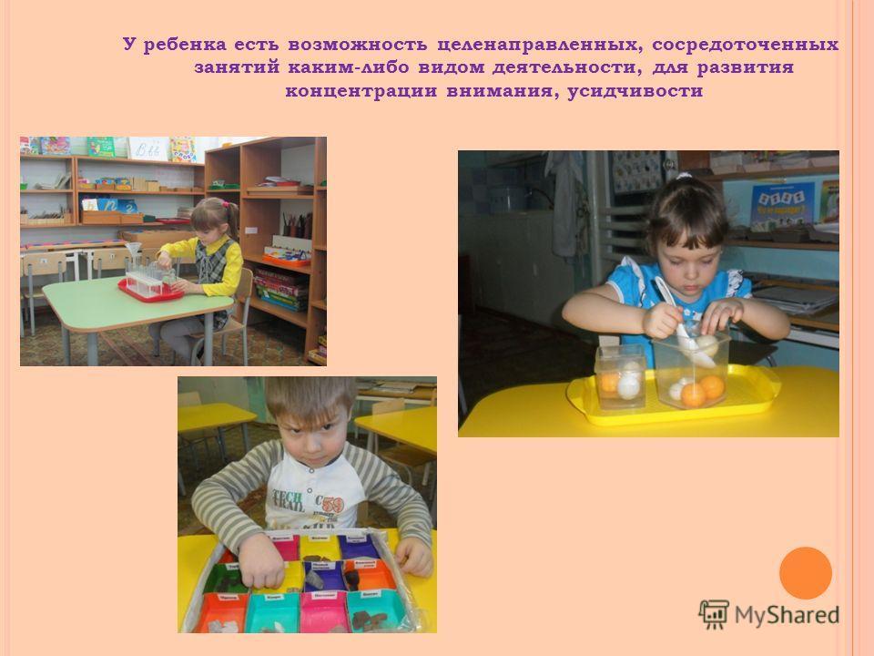 У ребенка есть возможность целенаправленных, сосредоточенных занятий каким-либо видом деятельности, для развития концентрации внимания, усидчивости