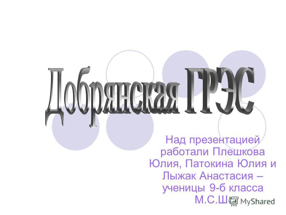 Над презентацией работали Плешкова Юлия, Патокина Юлия и Лыжак Анастасия – ученицы 9-б класса М.С.Ш.